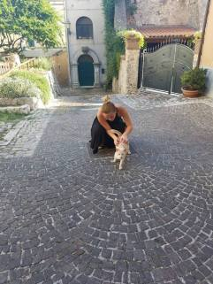 Found another cat!