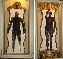 image: https://en.wikipedia.org/wiki/Anatomical_machines